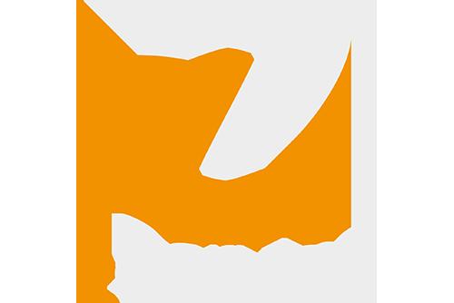 Logo zService